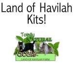 Land of Havilah Kits!