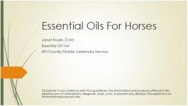 EO for Horses webinar pic