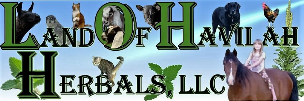 Land of Havilah Farm