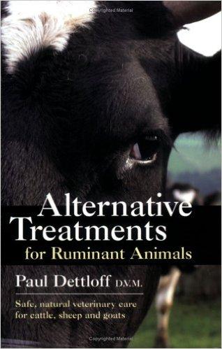 Detloff book