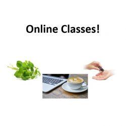 Education - Online Courses