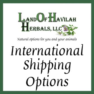International Shipping Options